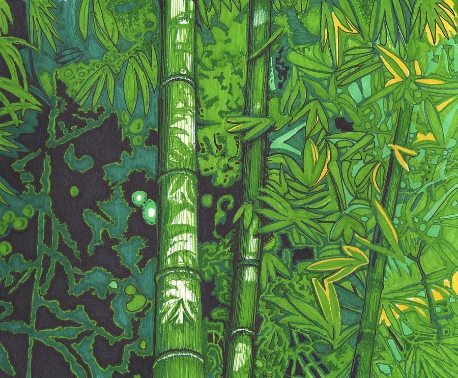 Bamboo Drawing - Bamboo by Will Stevenson