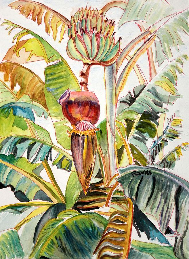 Bananas Painting - Banana Bloom by Richard Jules