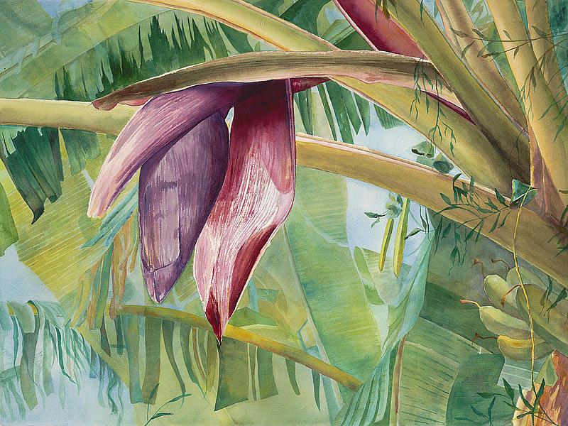 Bananas Painting - Banana Flower by AnnaJo Vahle