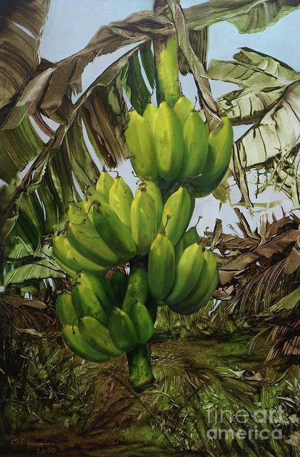 Tree Painting - Banana Tree by Chonkhet Phanwichien
