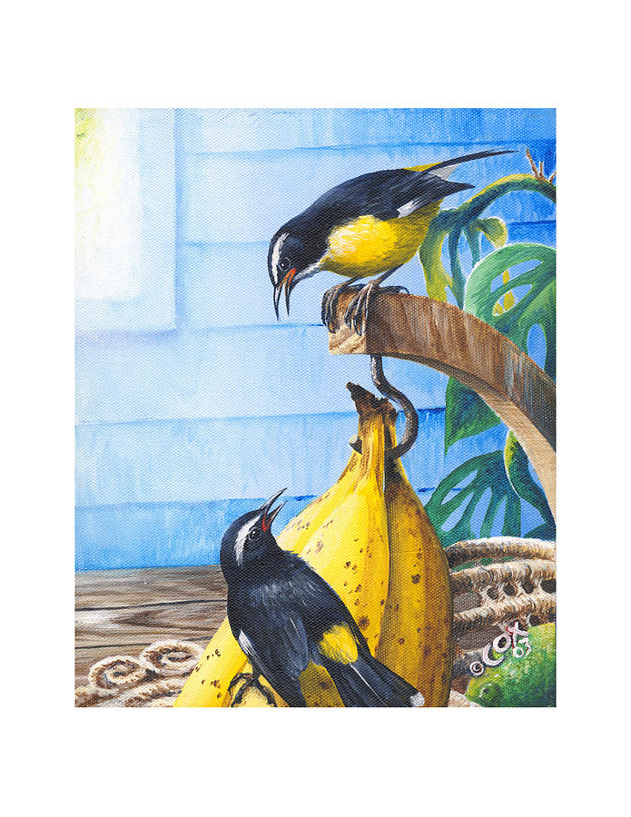 Chris Cox Painting - Bananaquits and bananas by Christopher Cox