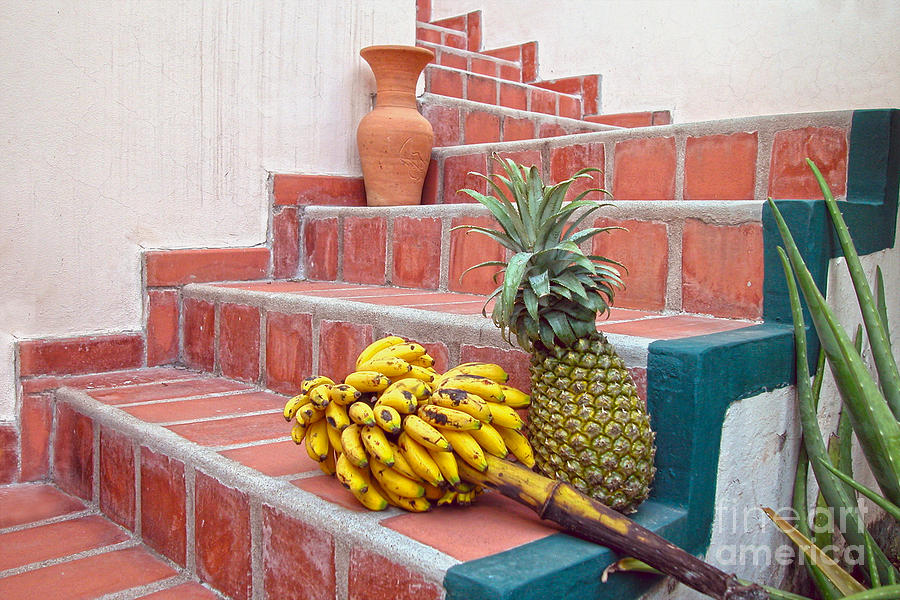 Pineapple Photograph - Bananas And Pineapple On Terracotta Steps by Catherine Sherman