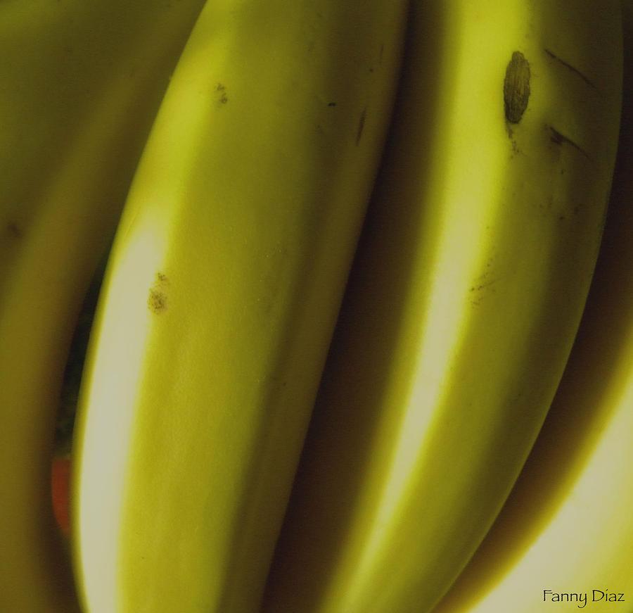 Bananas Photograph - Bananas by Fanny Diaz