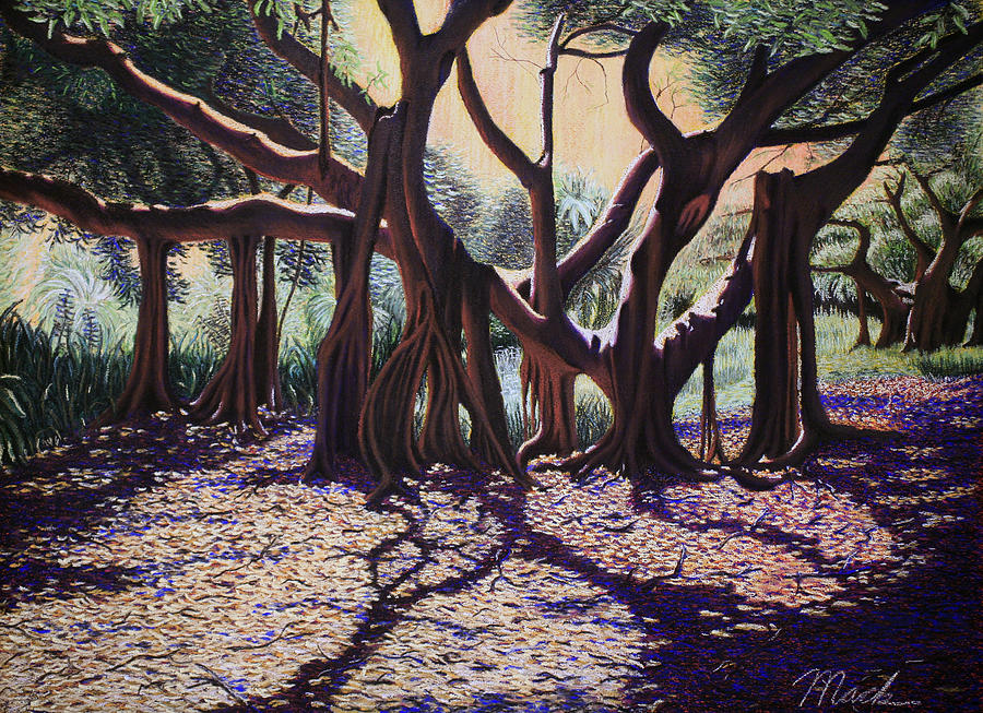Pastels Painting - Banyan Tree On Old Cutler Road by Stephen Mack