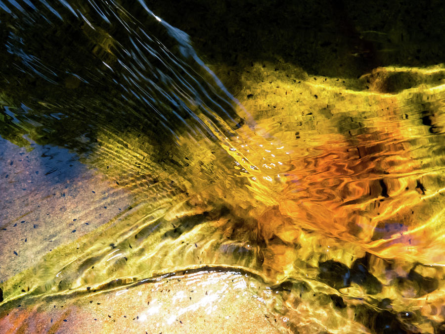 Water Photograph - Baptism by Simon Sephton