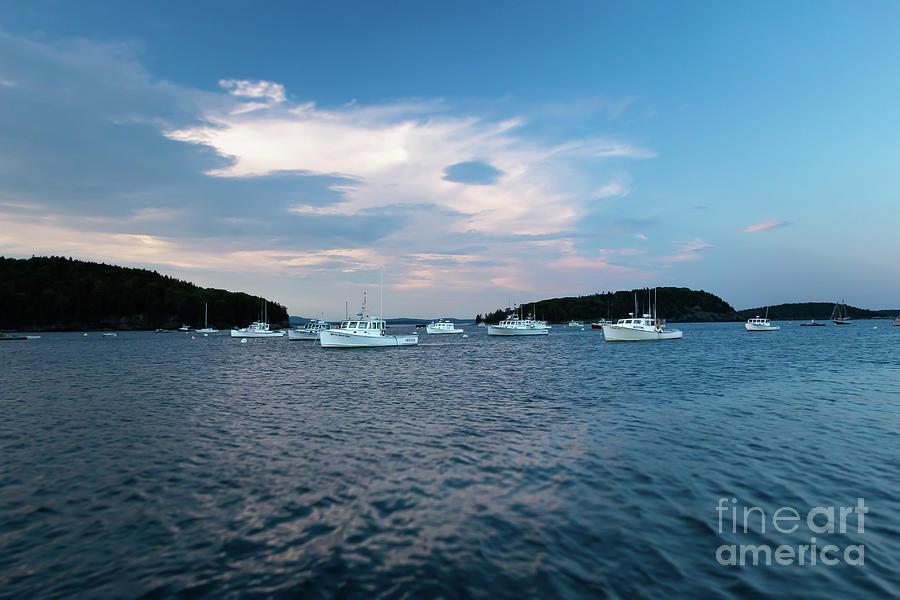 Bar Harbor Lobster Boats Photograph