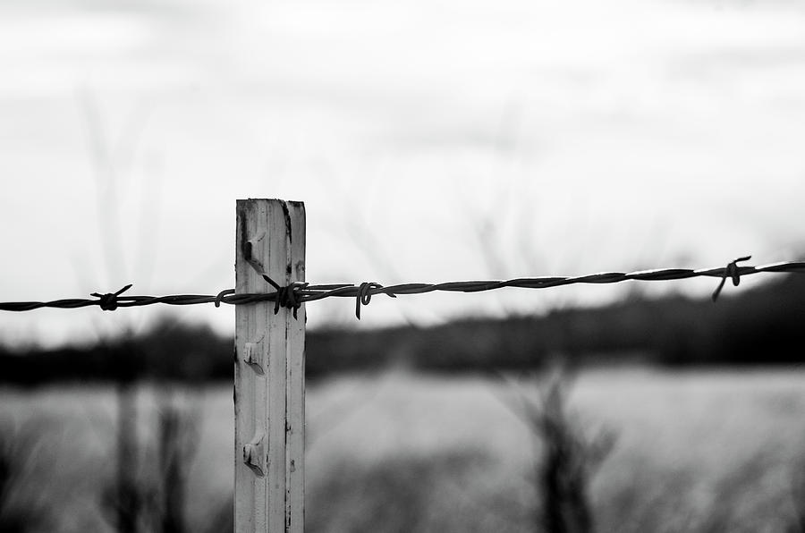 Barb-wire Fence Photograph by Gary Armstrong