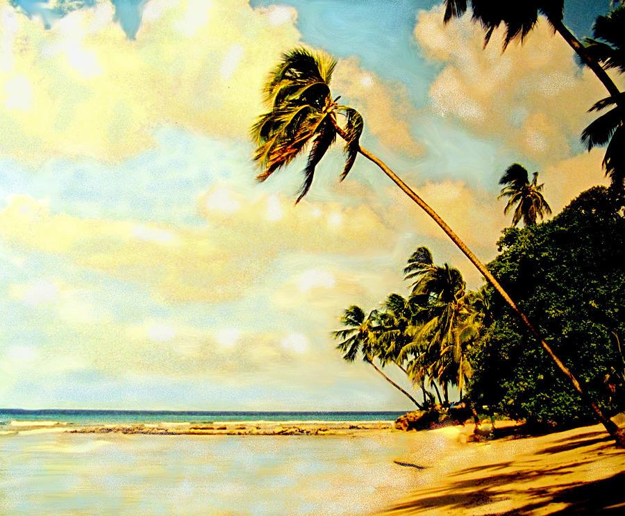Barbados West Coast Photograph