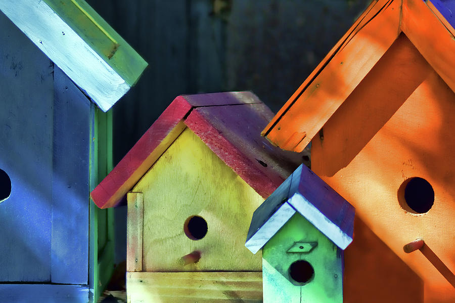 Still Life Photograph - Barbaras Birdhouses by Nikolyn McDonald