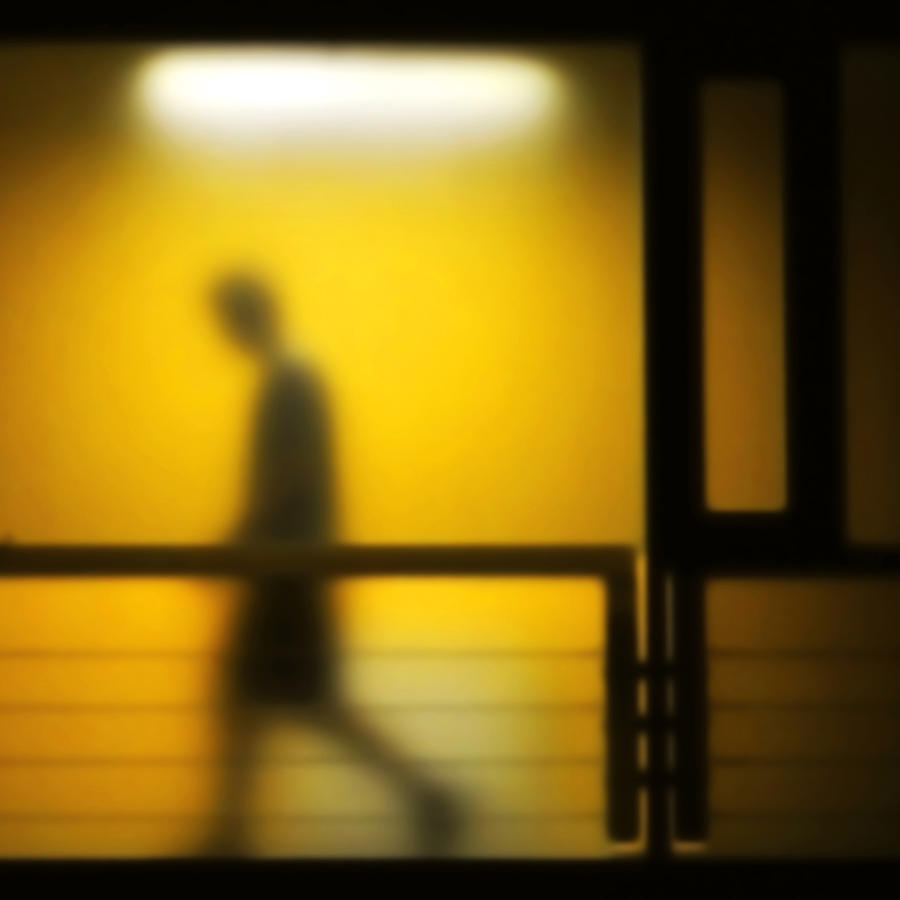 Walking Photograph - Bardo by Zsolo