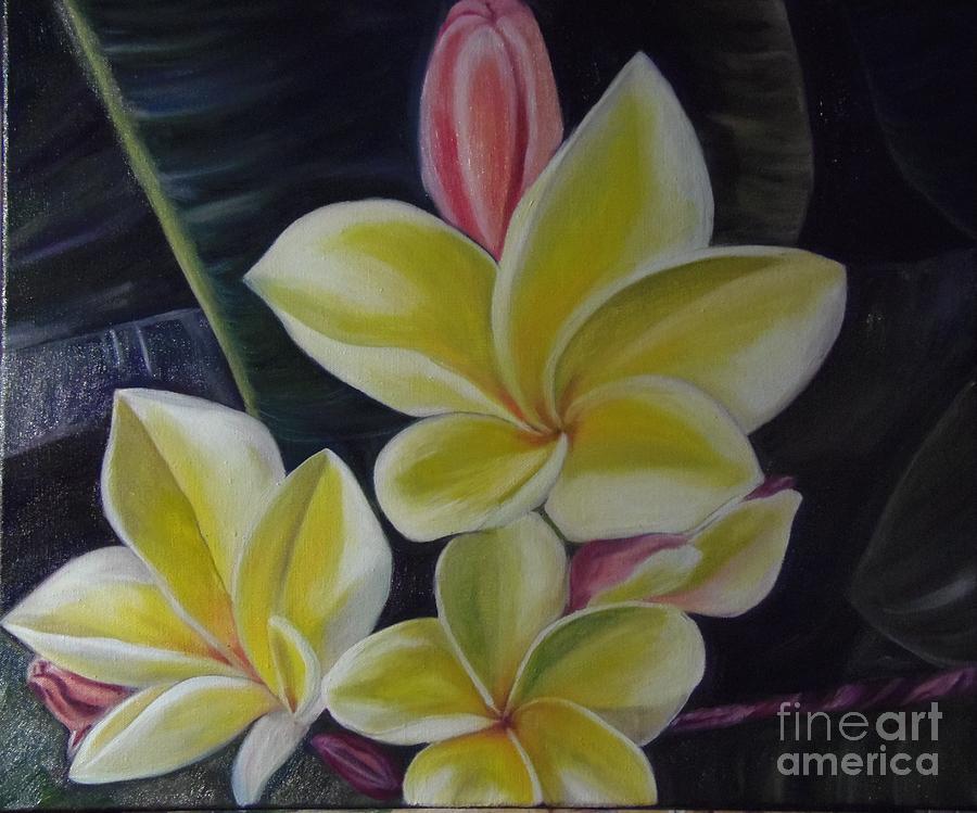 Plumeria Flower Painting - Barely Blushing by Isabel Honkonen