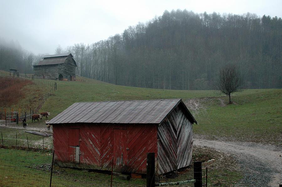 Barn Photograph - Barn At Stecoah by Kathy Schumann