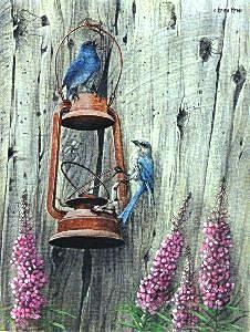 Birds Painting - Barn Blues by Heidi Hehn