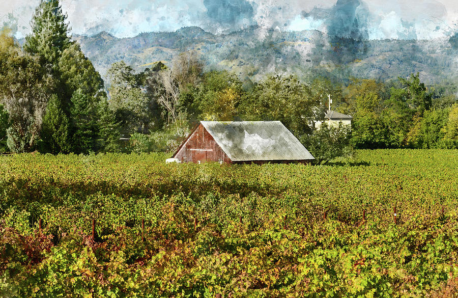 Barn in a Vineyard by Brandon Bourdages