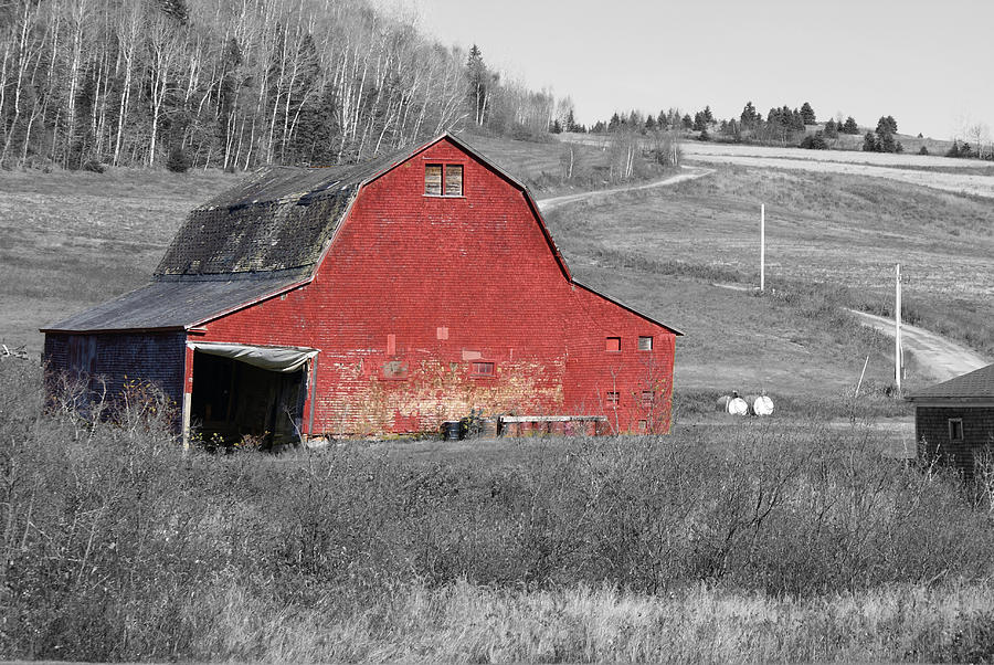 Abandoned Photograph - Barn In An Old Setting by Lisa Hebert
