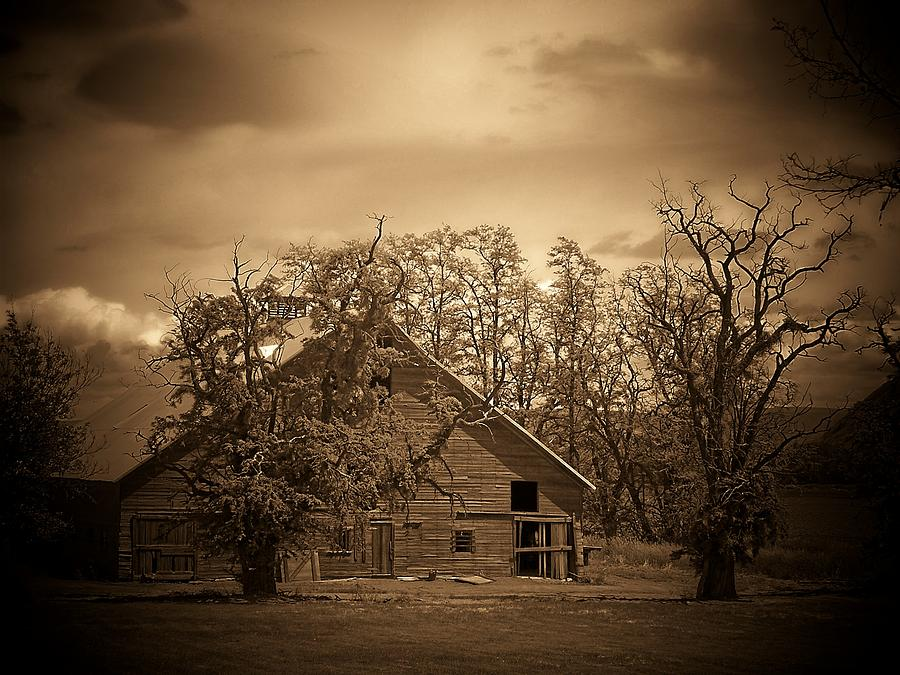 Barn Photograph - Barn In Sepia by Terry Jones