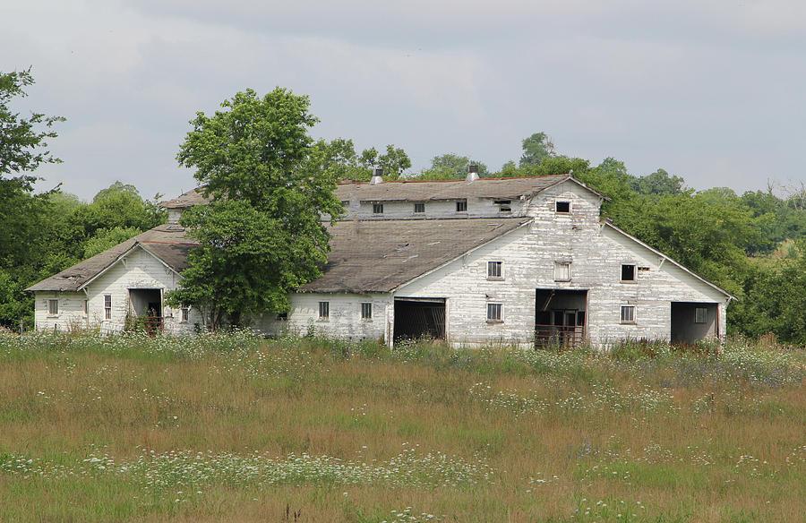 Barn Photograph - Barn In The Field 948 by Ericamaxine Price