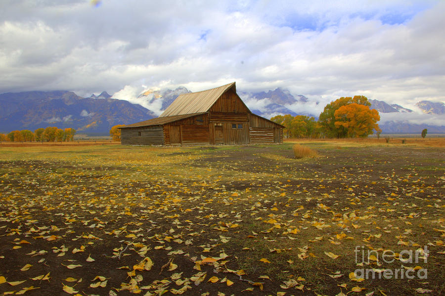 Barn on Mormon Row Utah by Cynthia Mask