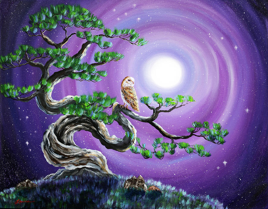 Owl Painting - Barn Owl In Twisted Pine Tree by Laura Iverson