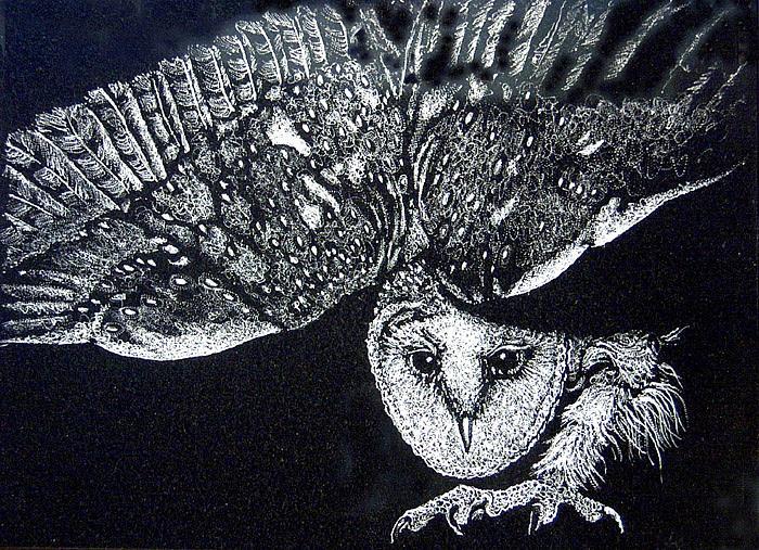 Owl Drawing - Barn Owl by Ric Larson