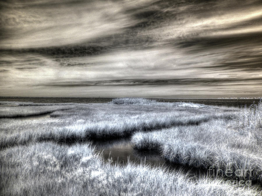 Barnegat Bay New Jersey by Jeff Breiman