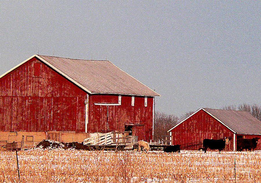 Red Barns Photograph - Barns In Winter by David Bearden