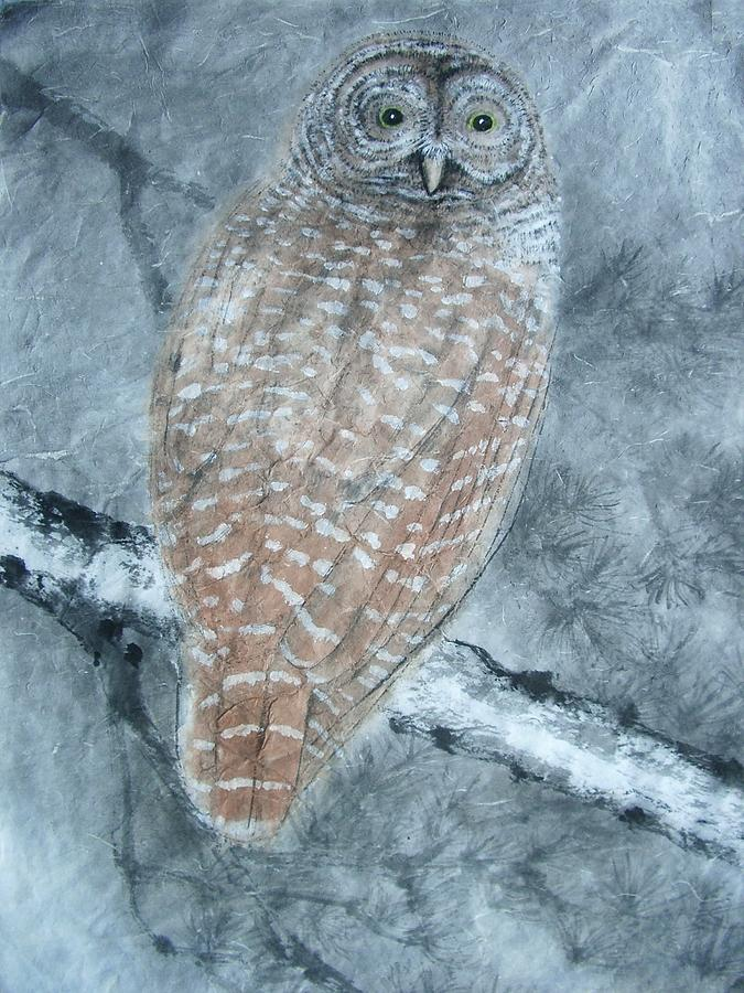 Nature Painting - Barred Owl by Jian Hua Li