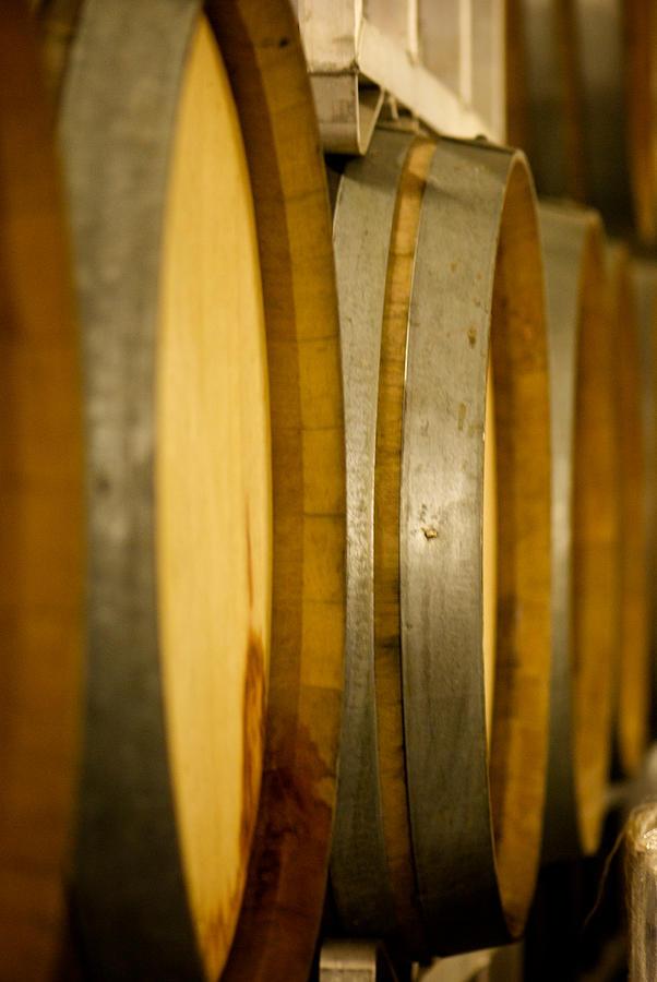Wine Photograph - Barrels Of Fun by Lisa Knechtel