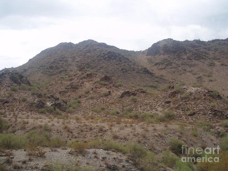 Barren Arizona Desert Photograph