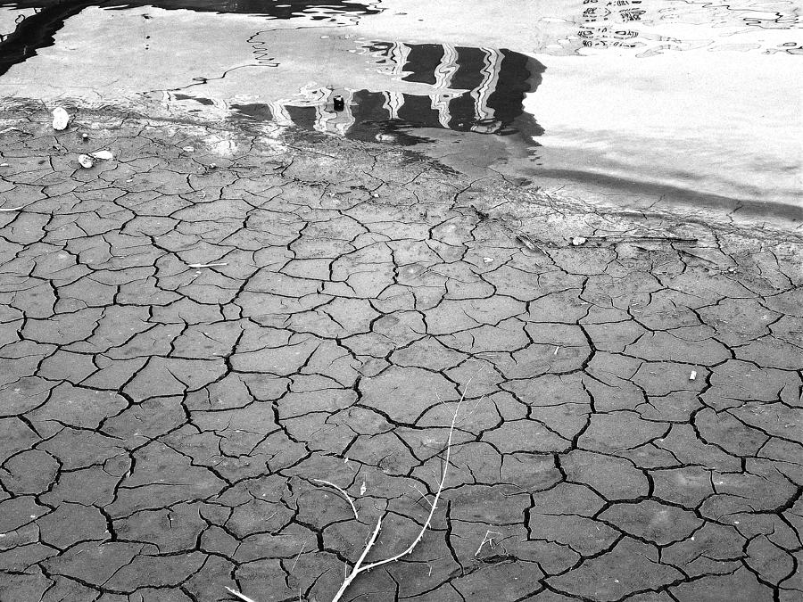 Barren Dry Land Photograph by Vineta Marinovic