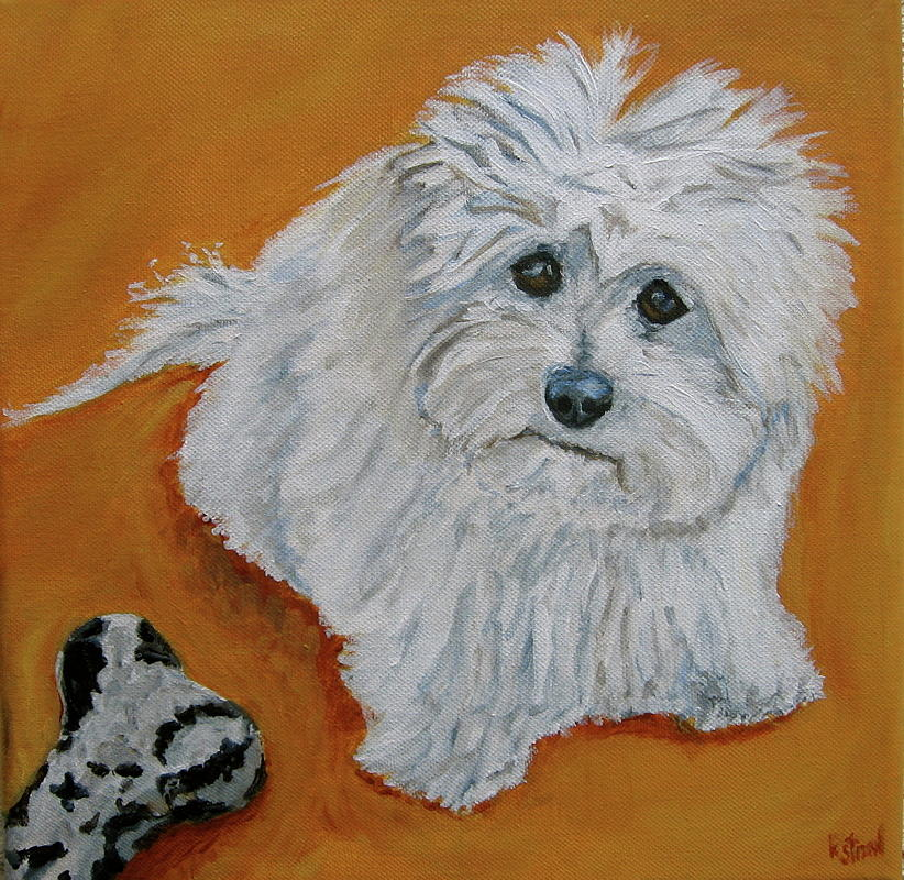 Maltese Painting - Barry And The Leopard Bone by Kellie Straw