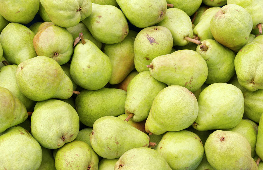 Fruit Photograph - Bartlett Pears by John Trax