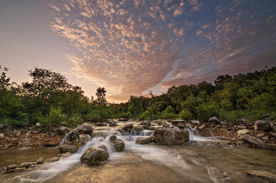 Barton Creek Greenbelt At Sunset by Todd Aaron