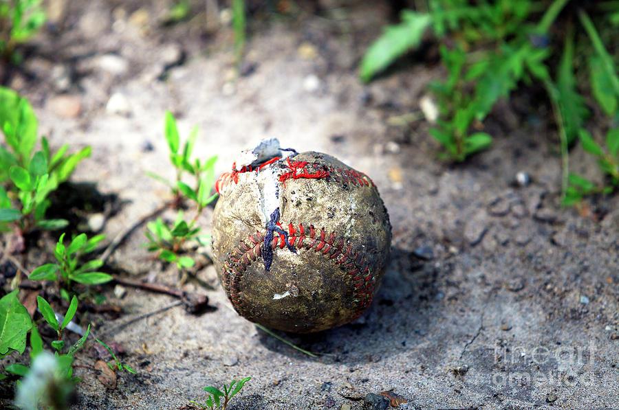 Baseball Photograph - Baseball by John Rizzuto