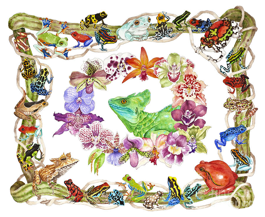 Frogs Painting - Basilisk, Orchids, Frogs by Lucy Arnold