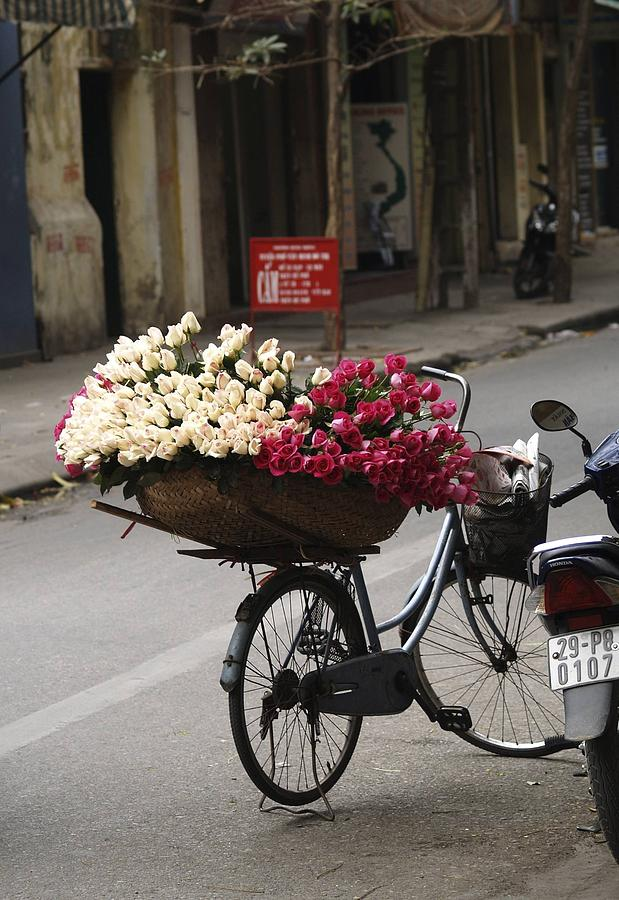 Streetscene Photograph - Basket Of Roses by Lee Stickels