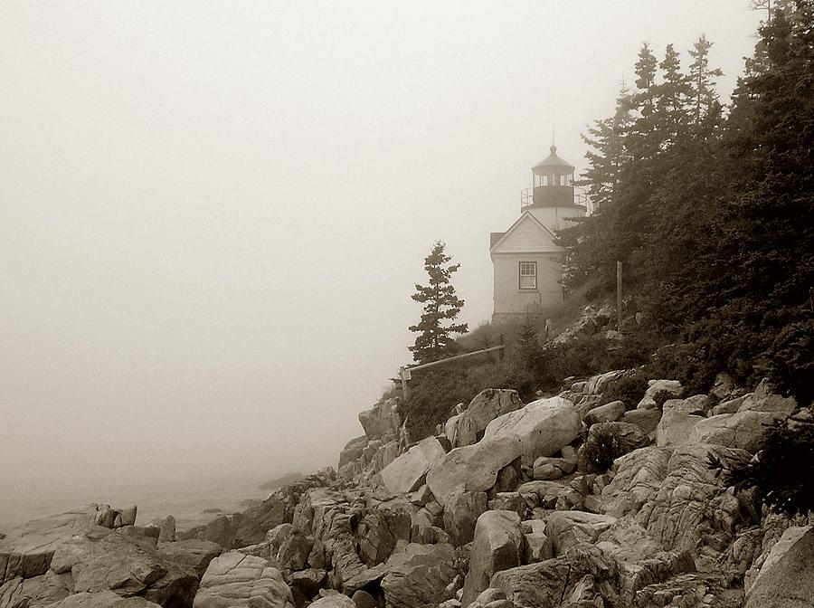 Maine Photograph - Bass Harbor by Shel Perkins