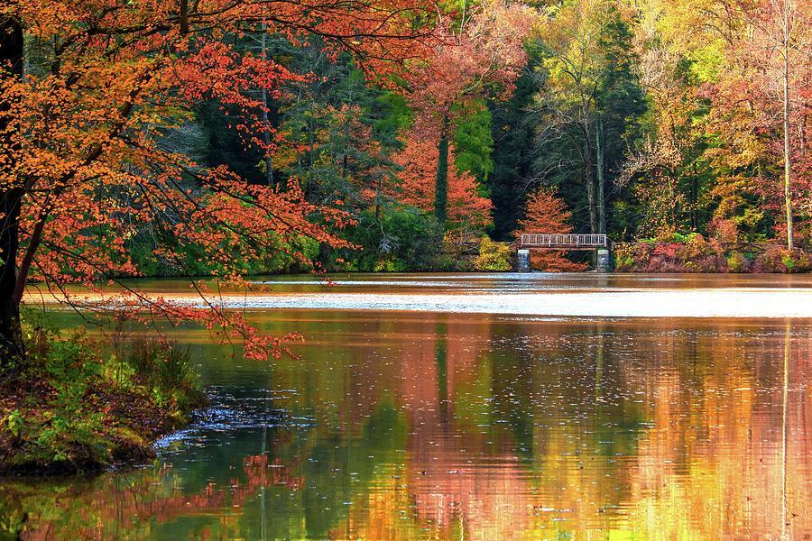 Autumn Photograph - Pond In Autumn by Carol Montoya
