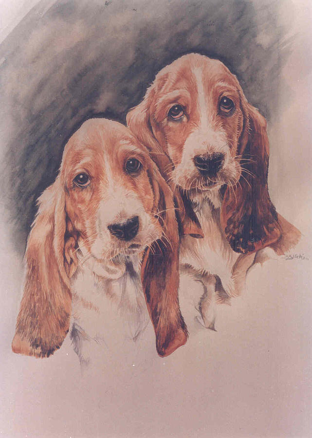 basset Hounds Painting by Sabrina Siga