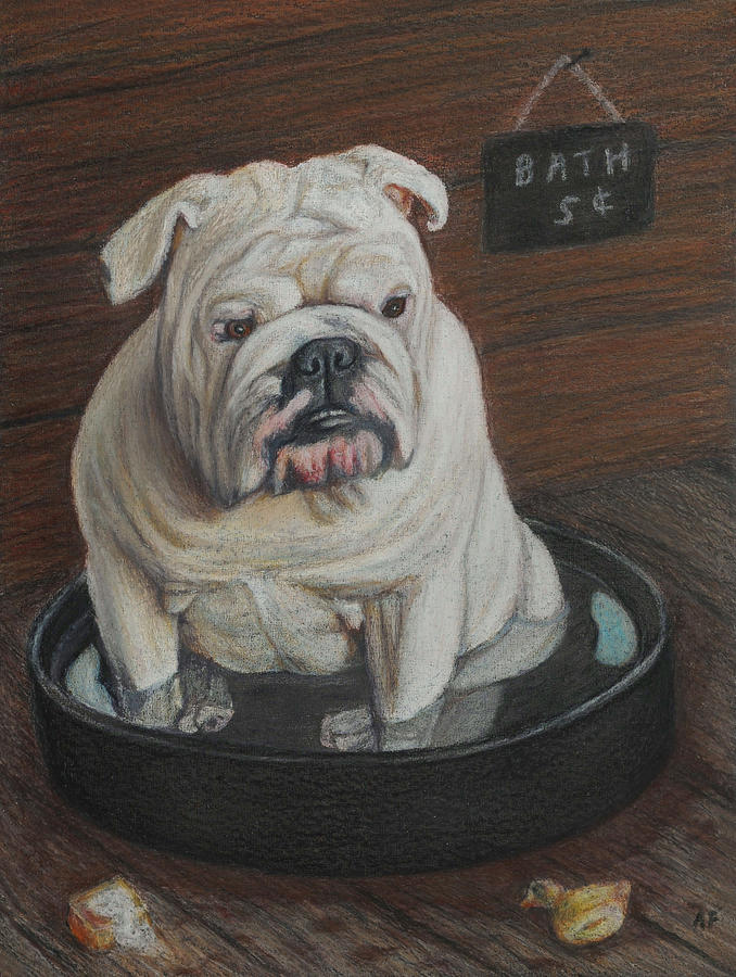 Bulldog Painting - Bath Five Cents by Angela Finney