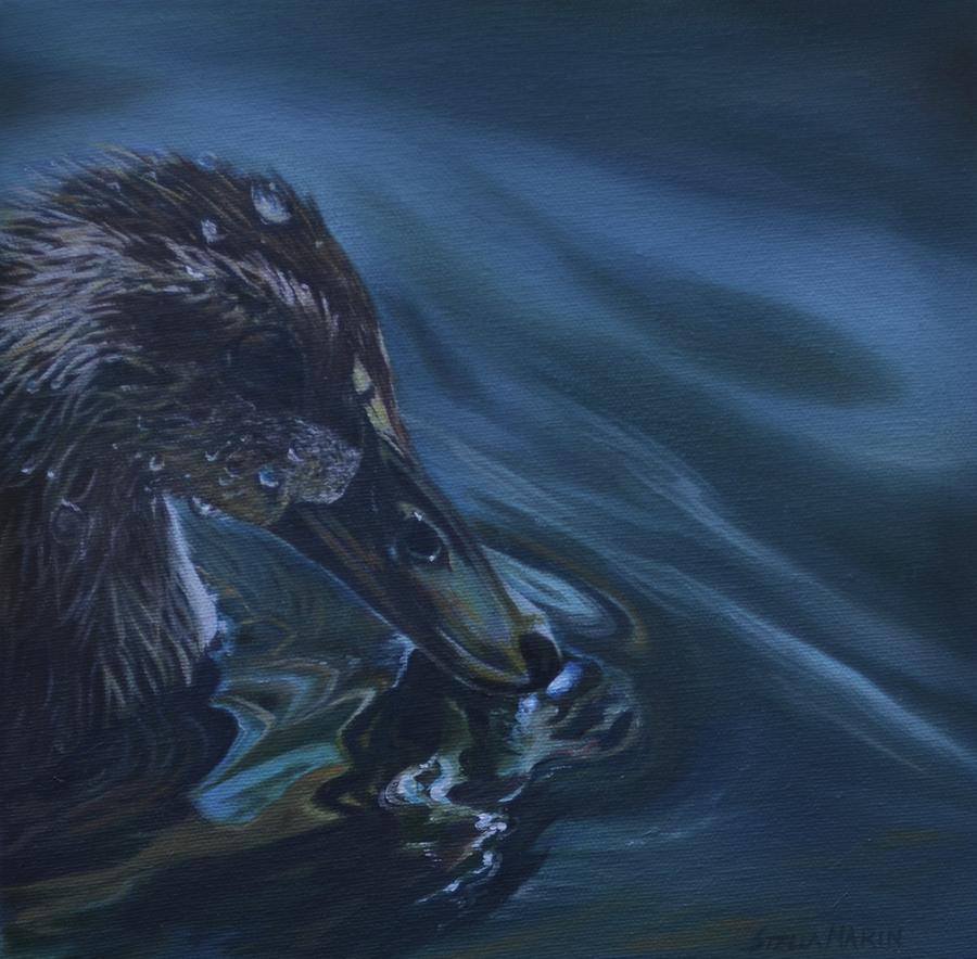 Bathing Duckline by Stella Marin