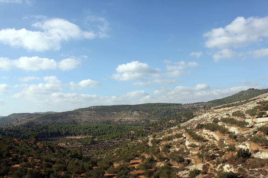 Batir Photograph - Batir Village in Bethlehem District by Munir Alawi