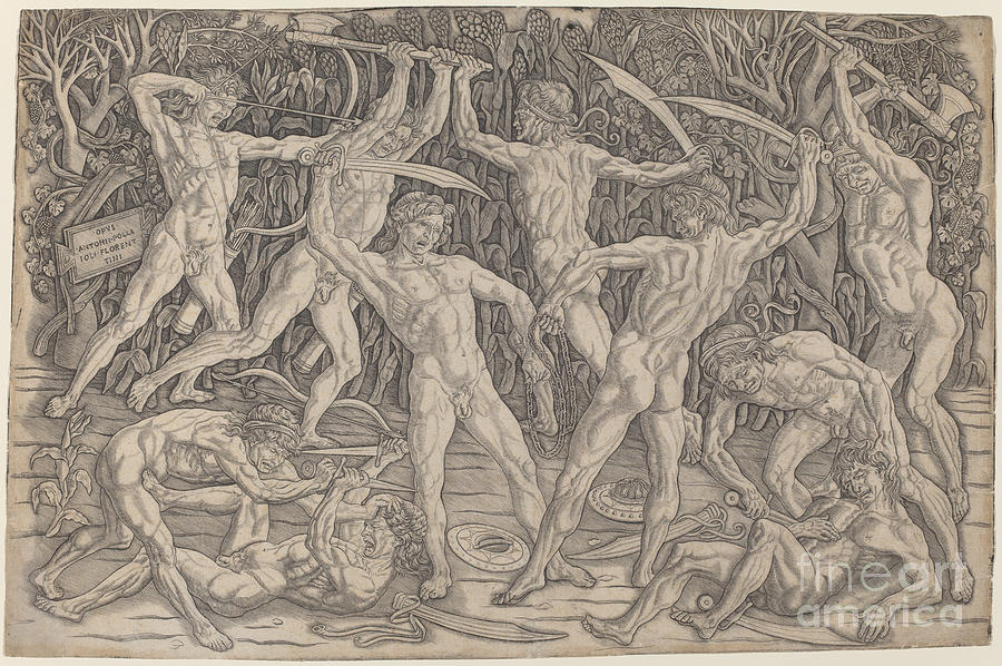 Battle Of The Nudes Drawing by Antonio Del Pollaiuolo