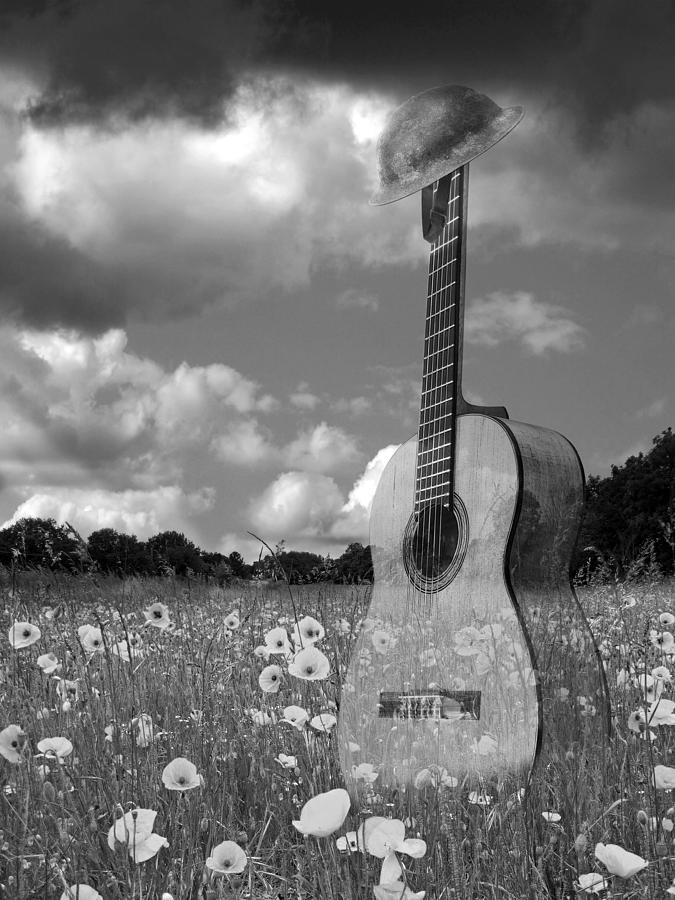 Acoustic guitar photograph battlefield blues in black and white guitar in poppy field by