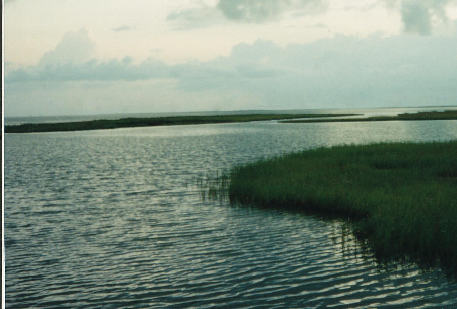 Bay Photograph - Bay And Marsh 1 by Cindy New