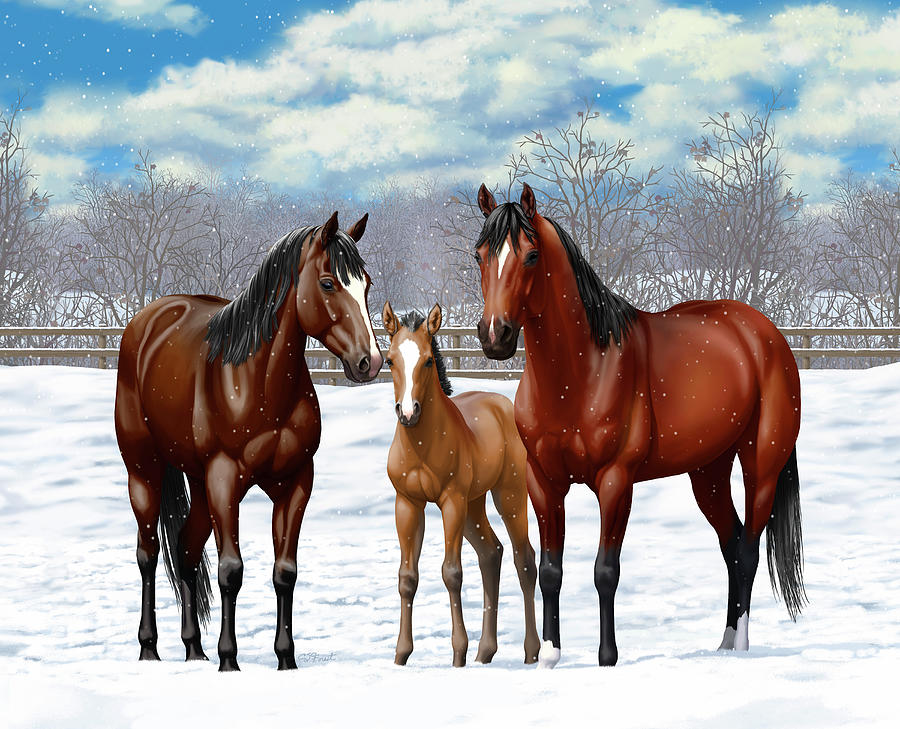 Horses Painting - Bay Horses In Winter Pasture by Crista Forest