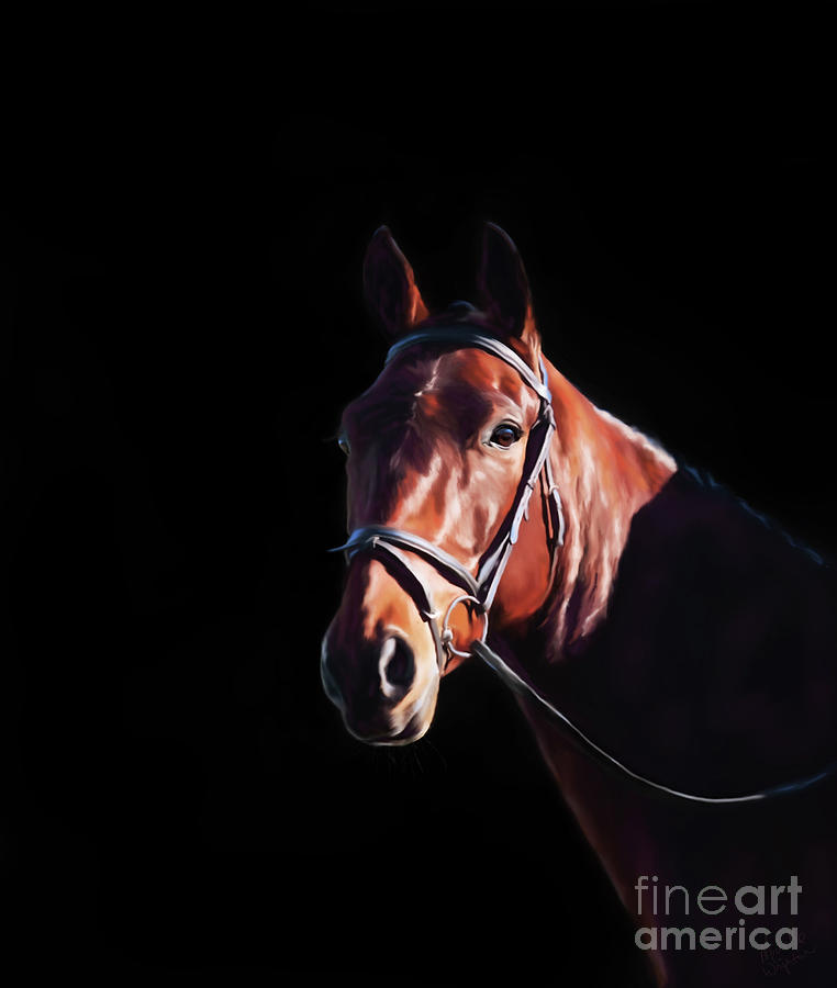 Bay on Black - Horse Art by Michelle Wrighton by Michelle Wrighton