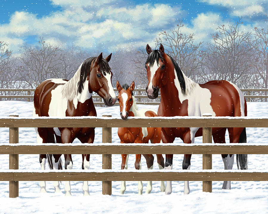 Horses Painting - Bay Paint Horses In Snow by Crista Forest