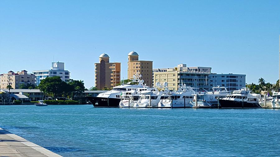 Sarasota Florida Photograph - Bay Side by Ric Schafer