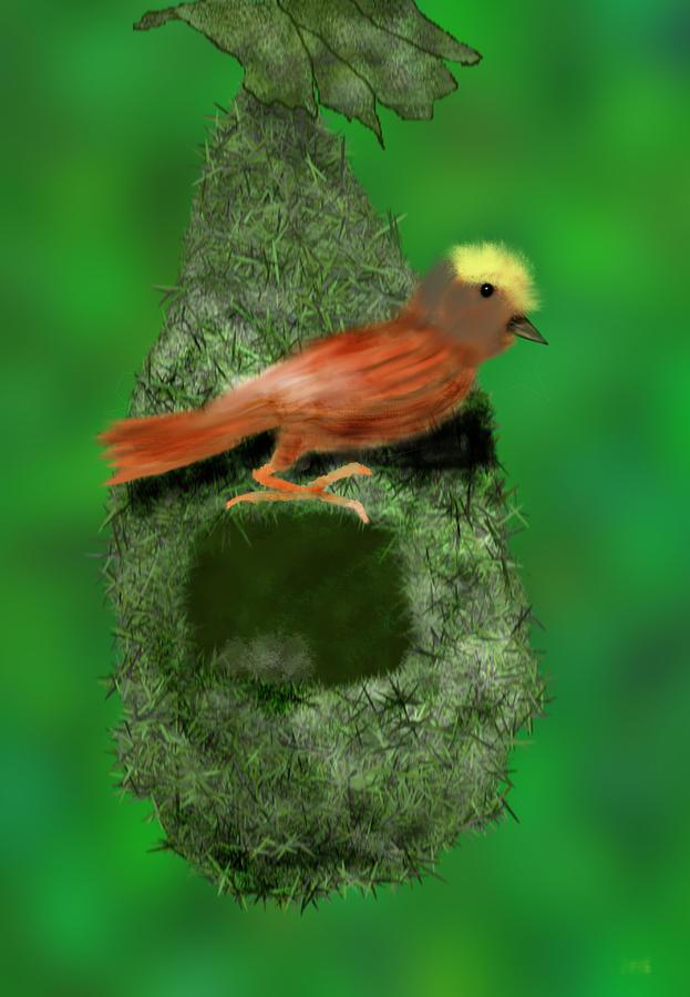 Bird Digital Art - Baya Weaver by Kab